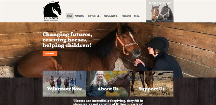 13 Hands Equine Rescue Inc.